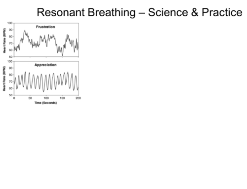 Resonant Breathing Workshop (Singapore: Oct 3)